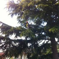 Utilisation du double rappel pour intervenir en bout de branches
