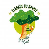 Logo edg fond vert blanc