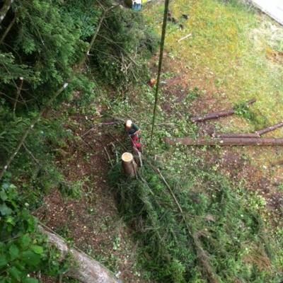 mise en tas des branches