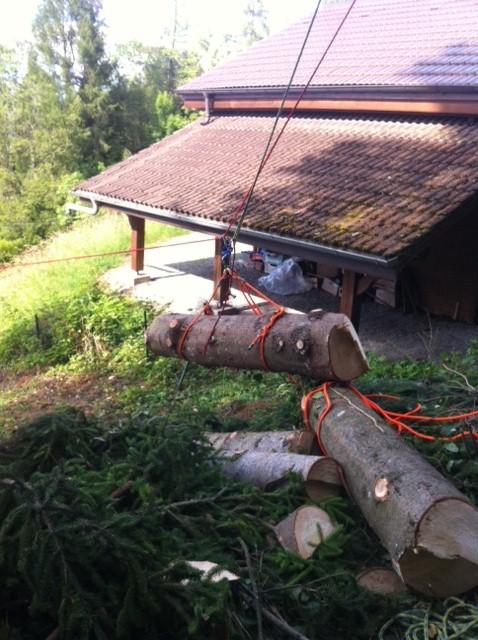 tyrolienne pour évacuer le gros bois