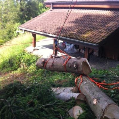 tyrolienne freinée afin d'évacuer le gros bois